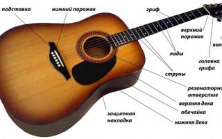 Как выбрать акустическую гитару — важные советы начинающим